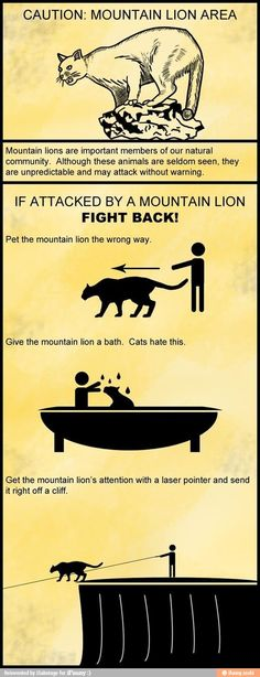 The proper way to deal with a mountain lion.