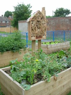 Insect hotel community garden   by Rose Perry