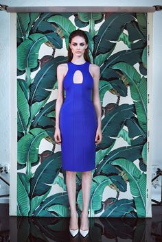 Cushnie et Ochs Resort 2015 - Collection - Gallery - Style.com