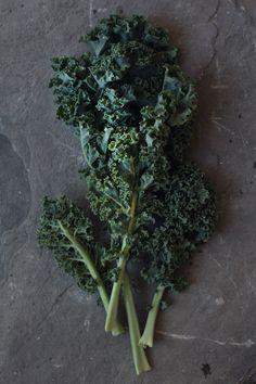5 Reasons To Love Kale ( & Kale Chips Recipe)