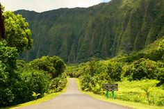 Once you drive through Ho'omaluhia's entrance, you will be immediately surrounded by a magnificent garden full of vibrant, tropical flora that stretches on for miles. Exhale, and you will surely feel your stress melt away as you enjoy the scenery.