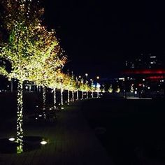 Where is your favorite destination to celebrate the holidays? Tag your holiday posts #TheHarperWay for a chance to have your photo reposted!  #KlydeWarrenPark situated over Woodall Rodgers Freeway in downtown #Dallas, #Texas, is charming place to stroll b