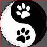 De Poten van de Hond van Yang van Yin