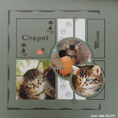 """Chaton"" - Kit Be Rêve"