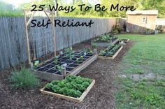 25 Ways To Be More Self Reliant Today! #homesteading #preparedness #survival