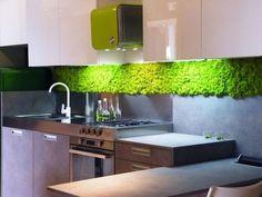 Moos Design | Personalizari cu muschi si licheni