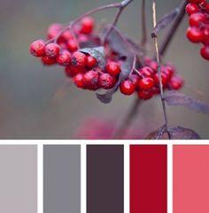 Никто лучше природы еще не смог иделально подобрать цвета. Всем известны замечательные цветовые палитры Джессики Колалука (Jessica Colaluca). В их основу она положила различные оттенки, которые можно увидеть в окружаеющем нас мире. Я считаю, что на эмоциональное состояние человека большое влияние оказывают окружающие его цвета. И те цвета, которые окружают нас с самого рождения, они непременно… #Цвета #Цвет #Вдохновение