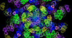 Kaleidoscopio viviente