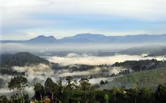 "https://flic.kr/p/buyqPH   SRI LANKA   Early morning views from Haputale, Sri Lanka.                                       <a href=""http://www.boazimages.com"" rel=""nofollow"">www.boazimages.com</a>"