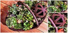 florales-schweringen