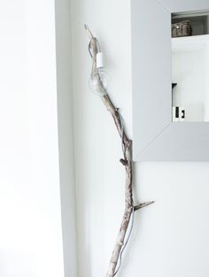 Oh the simplicity of a branch lamp