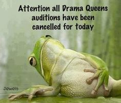 Attention All Drama Queens Pictures, Photos, and Images for Facebook, Tumblr, Pinterest, and Twitter