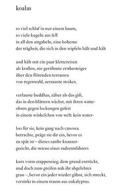 Goethe gedicht wipfel