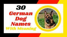 Most Popular Dog Names, Best Dog Names, Pet Names, Best Dogs, German Dog Names, German Dogs, Police Dog Names, Police Dogs, Cute Names For Dogs