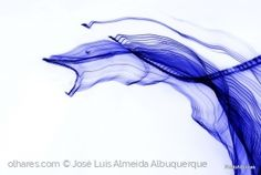 Abstrato/Blue rage