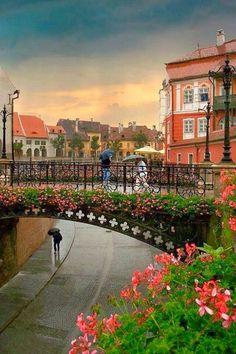 Liars Bridge - Sibiu, Romania