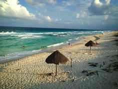 One of my favorite places I've been... Conzumel, Mexico.  Swam with the Dolphins there.  Amazing.