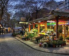 Corner Florist - Street view - Thessaloniki - an ancient kingdom of in modern times Mykonos, Macedonia Greece, Zorba The Greek, Acropolis, Thessaloniki, Beautiful Places To Visit, Greece Travel, Places Around The World, Beach Trip