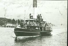 """Manly Ferry """"Fairlight """" Sydney Ferries, Steamers, The Old Days, North Shore, South Wales, Aerial View, Rivers, Paddle, Old Photos"""