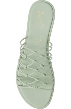Tiana, Seychelles, Flat Shoes, Slide Sandals, Me Too Shoes, Drawer, Slippers, Nordstrom, Flats