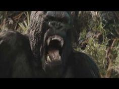 Monster Movie Mashup