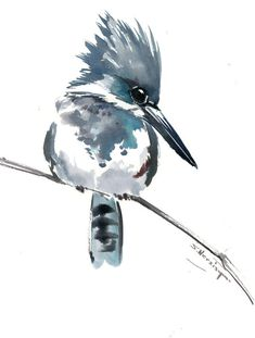 Bird artwork, Belted Kingfisher, original watercolor painting, blue sage green bird artwork watercolor gray by ORIGINALONLY on Etsy