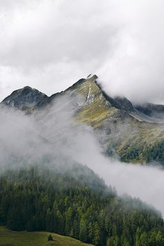 Foggy mountain morning by Alexander Brugger on Flickr.