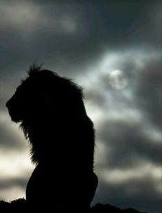 Lion of Judah sitting in shadow of cloud covered sun.