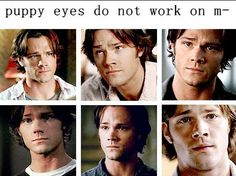 Nevermind: Puppy dog eyes always work on me, as long as they are Sam Winchester's. Or, y'know, Jared's lol