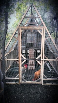 Chicken Coop - Chicken Coops That You Can Do It Youself Building a chicken coop does not have to be tricky nor does it have to set you back a ton of scratch. Chicken Barn, Chicken Coup, Chicken Runs, Simple Chicken Coop, A Frame Chicken Coop, Amish Chicken, Small Chicken Coops, Chicken Waterer, Chicken Feeders