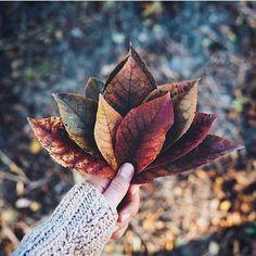 travel idea for teenagers Herbst Laub Insta Shoot Best Pins Aesthetic Autumn Scenery, Autumn Nature, Autumn Leaves, Autumn Photography, Creative Photography, Autumn Aesthetic Photography, Autumn Aesthetic Tumblr, Autumn Tumblr, Camera Photography