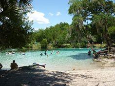 Ocala National Forest: Silver Glen Springs