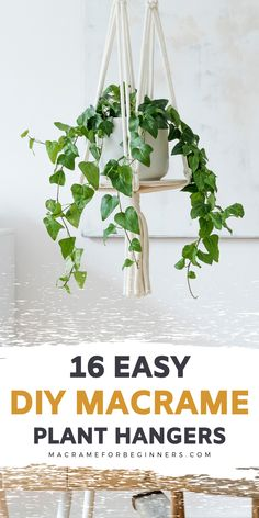 One of the easiest Macrame projects to get started with is a plant hanger. Decorate your house on a budget with 16 easy DIY Macrame plant hangers for beginners! #macrame #macrameforbeginners #macrameplanthanger #diy Macrame Hanging Planter, Macrame Plant Hangers, Hanging Planters, Free Macrame Patterns, Macrame Projects, Macrame Jewelry, Own Home, Easy Diy, Budget