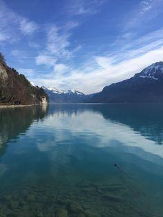 Gatorade anyone? Lake Brienz Switzerland [1334x750] [OC]