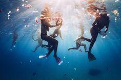 """acai-lagoon: """"kiwi–twist: """" turtlecoast: """" x follow for more summer/boho/ocean/tropical x """" tropical // summer """" tropical blog here xx """""""