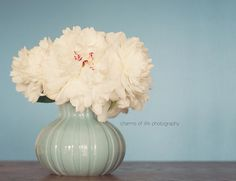 for the bedroom:) peonies are supposed to attract love...ahem T.O.P. ....