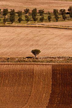 Foto by AngeloChiariello, via Flickr
