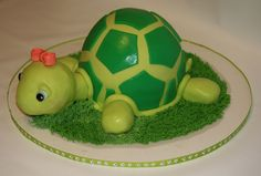 turtle cake | turtle cake turtle cake i made for my sister s birthday for the shell ...