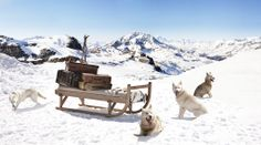 Explorersled chalet sled sun lounger / daybed in the Alps