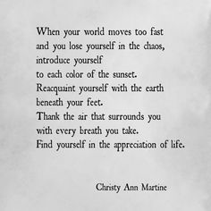 When your world moves too fast ... find yourself in the appreciation of life - Christy Ann Martine