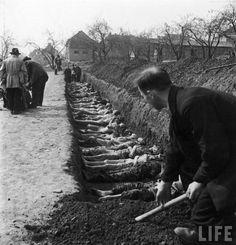 Mass burials