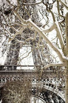 Eiffel Tower in the Winter - Haleigh Walsworth