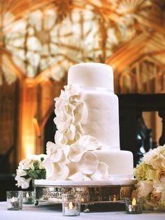 Classic English Wedding at the Bodleian Library Wedding Shoot, Wedding Bride, Our Wedding, Dream Wedding, Wedding Desert, Boho Bride, Amazing Wedding Cakes, White Wedding Cakes, Succulent Wedding Cakes