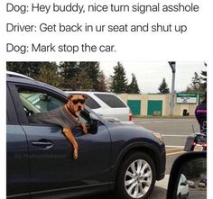 Stop the fucking car funny pics, funny gifs, funny videos, funny memes, funny jokes. LOL Pics app is for iOS, Android, iPhone, iPod, iPad, Tablet