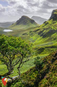 Wer findet Nessie? #scotland #roadtrip