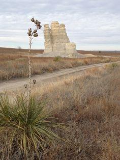 Castle Rock - Chalk Formation (Kansas)