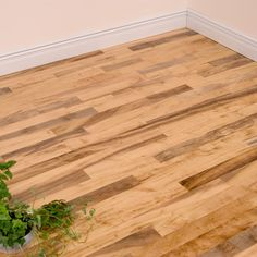 """3"""" Unstained Pepperwood. Milled square edges (30""""). Natural grade. mixed grain. PF with clear UV satin. Surface type is smooth and unstained"""