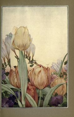 Tulips, News of Spring and Other Nature Studies, Maurice Maeterlinck, 1917.