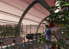 An artist concept depicts a greenhouse on the surface of Mars.