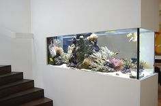 Elegant Dining Room, House Interior, Modern House Design, Iron Decor, Fish Tank Wall, Interior Design Your Home, Elegant Bedroom, Interior Garden, House Plants Decor